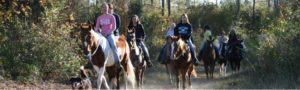 Horseback Riding Myrtle Beach at Wampee Stables