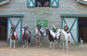 Meet the Myrtle Beach Horseback Riding guide team at Wampee Stables